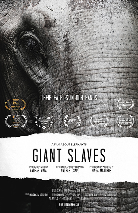 Giant Slaves movie poster